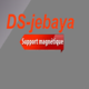 Logo dsdeclaration 2015