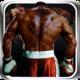 Logo Jeu de Boxe Virtuelle 3D