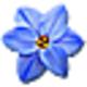 Logo Flowery Vale