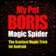 Logo Magic Spider