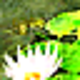 Logo Nature 3D Screensaver