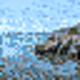 Logo Spa Coast Screensaver