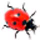 Logo Ladybug on Desktop