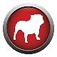 Logo BullGuard Online Backup 2013