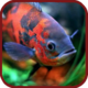 Logo Aquarium 3D Fond d'écran vidéo