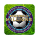 Logo Football Millions 2014