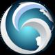 Logo Web Browser