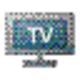 Logo TVzation