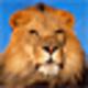Logo Free Lions Screensaver