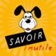 Logo Savoir Inutile