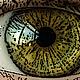 Logo Image Tools