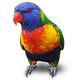 Logo Jubler Linux