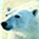 Logo dArt North Pole vol.1
