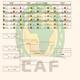 Logo Calendrier coupe d'Afrique des Nations 2017