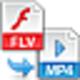 Logo FLV to MP4 Encoder