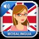 Logo MosaLingua anglais iOS