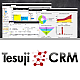 Logo Tesuji CRM