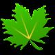 Logo Greenify Android