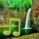 Logo Jungle Sounds