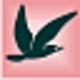 Logo Swift XML Converter
