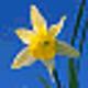 Logo IconUtils