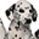 Logo Free Bliss Screensaver