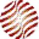 Logo DataNAUT TL