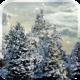 Logo Snowfall Live Wallpaper