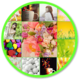 Logo Sweet Wallpaper for Whatsapp