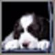 Logo Doggone Doggies Screensaver