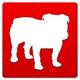Logo BullGuard Antivirus