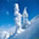 Logo SaversPlanet Snowfall Screensaver