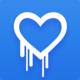 Logo Heartbleed Scanner