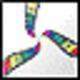 Logo Selteco Alligator Flash Designer