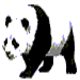 Logo Panda-Sql