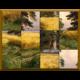 Puzzle d'art