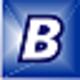 bibm_icon_32x32.gif