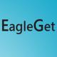 Logo Eagle Get