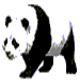 Logo Panda-Qry