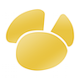 Logo Navicat Premium (Windows) – v11