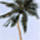 Logo dArt Tropical Islands vol.1
