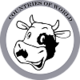Logo COW (Countries Of World)