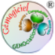Logo GEMOciation 18-09