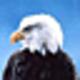 Logo Free Winter Spirit Screensaver