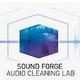 Logo MAGIX Audio Cleaning Lab