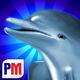 Logo Dolphins Dice Slots