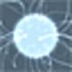 Logo Zoom Mania