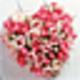 Logo Beautiful Wedding Screensaver
