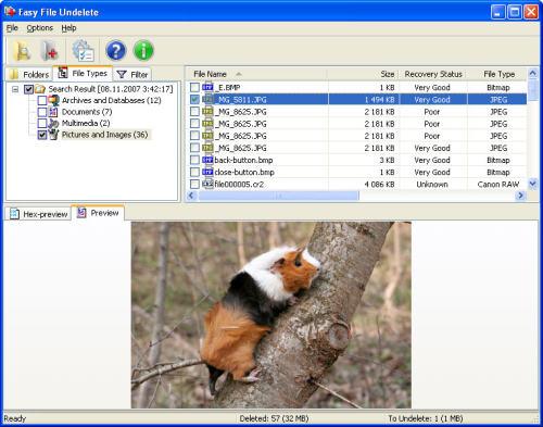 Capture d'écran Easy NTFS File Undelete