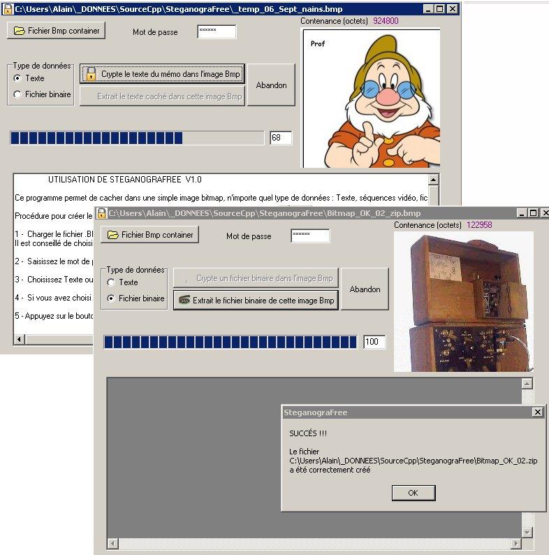 Capture d'écran SteganograFree